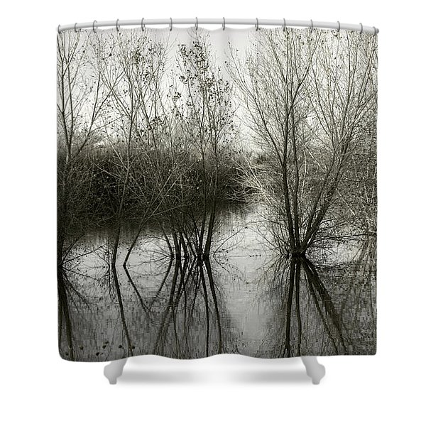 Bosque Reflection Shower Curtain