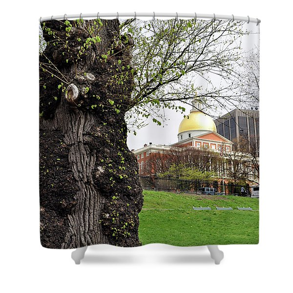 Boston Ma State House From Afar Shower Curtain