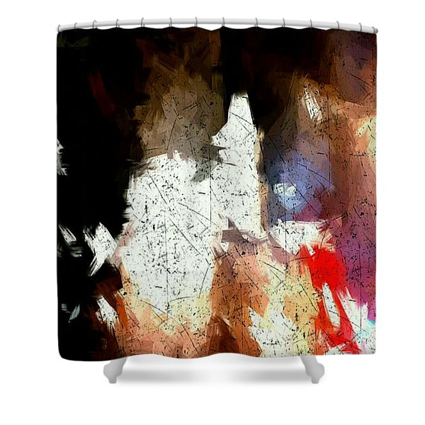 Boston Night Shower Curtain
