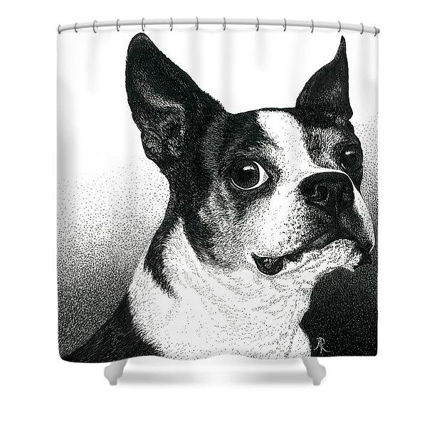 Boston Style Shower Curtain