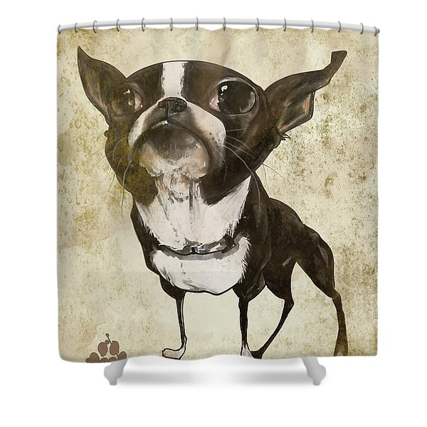 Boston Terrier - Antique Shower Curtain