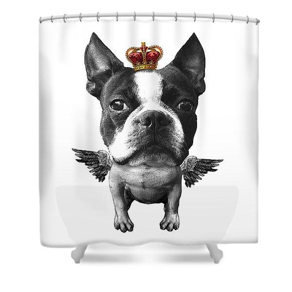 Boston Terrier, The King Shower Curtain