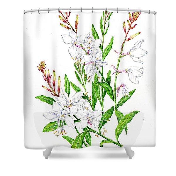 Botanical Illustration Floral Painting Shower Curtain