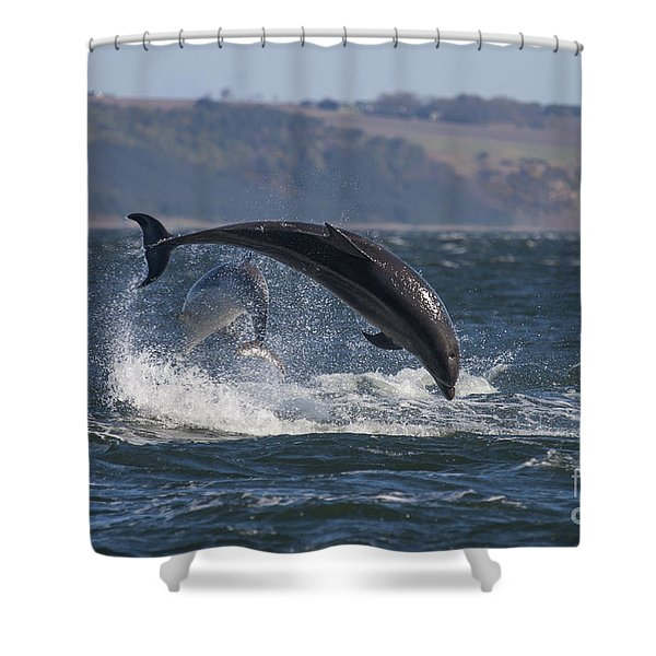 Bottlenose Dolphins - Scotland  #25 Shower Curtain