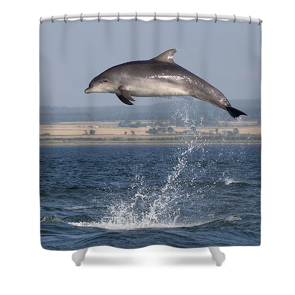 High Jump - Bottlenose Dolphin  - Scotland #42 Shower Curtain