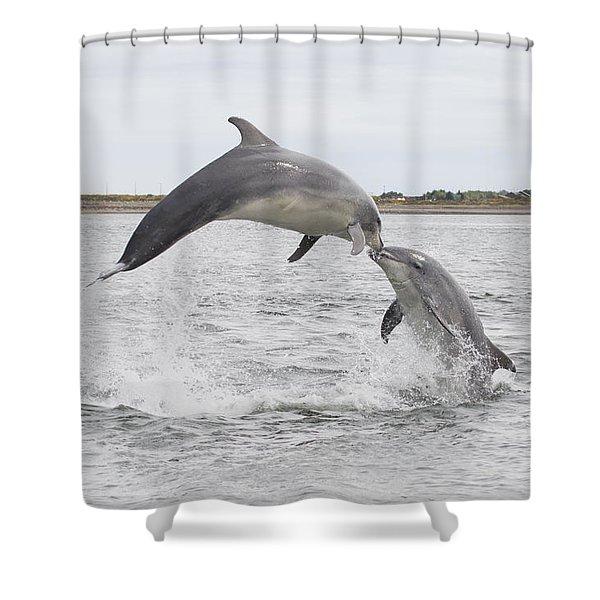 Bottlenose Dolphins - Scotland #1 Shower Curtain
