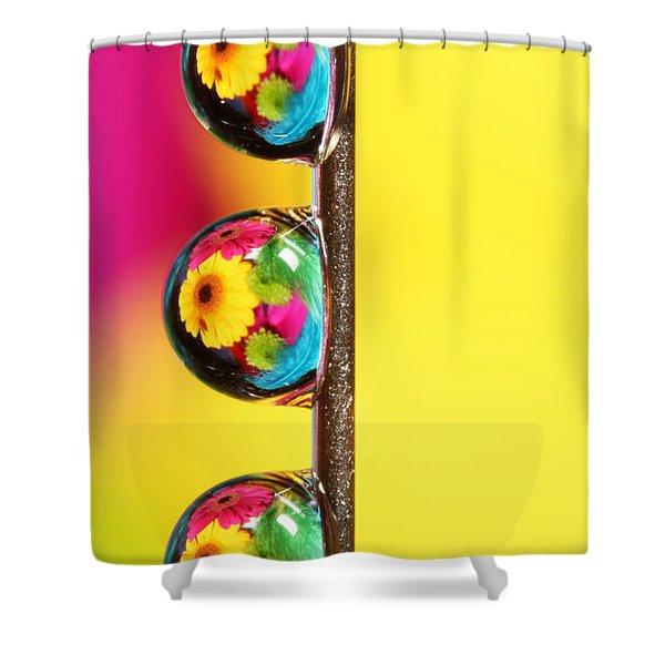 Bouquet In A Pin Drop Shower Curtain