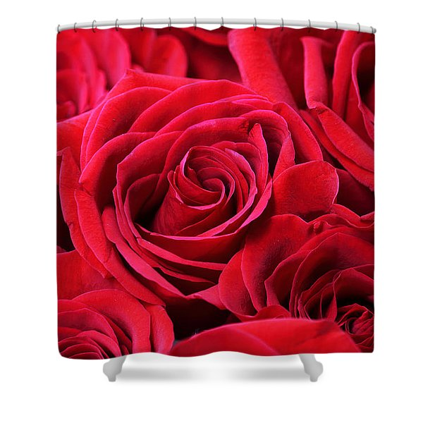 Bouquet Of Red Roses Shower Curtain