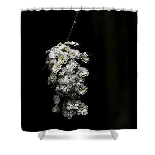 Bouquet Of White Shower Curtain