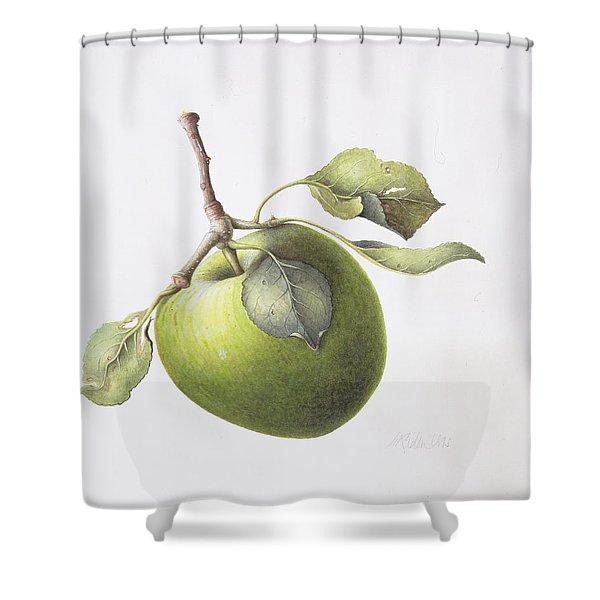 Bramley Apple Shower Curtain