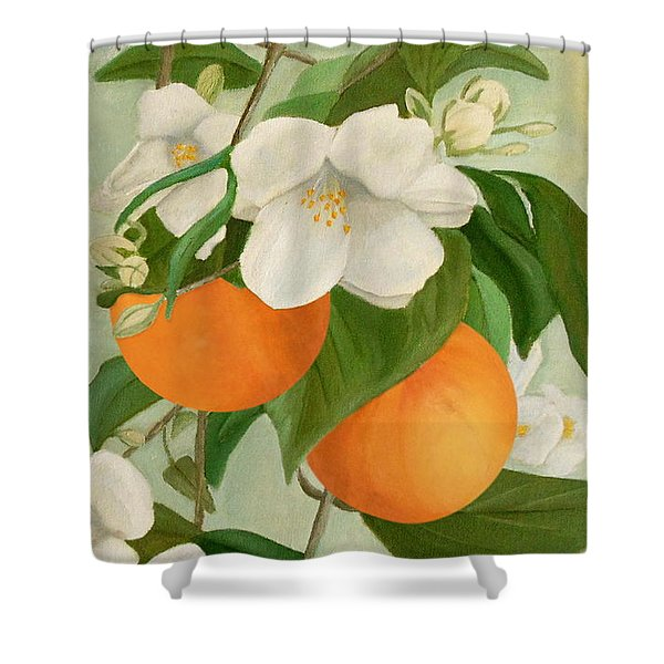 Branch Of Orange Tree In Bloom Shower Curtain