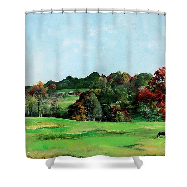Beaver Valley Shower Curtain