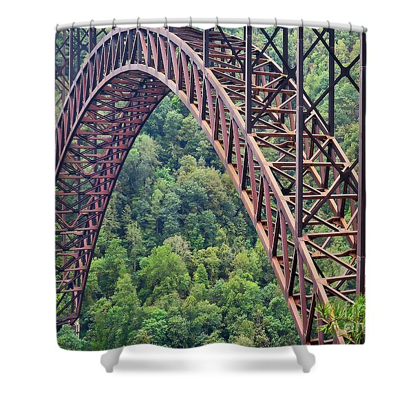 Bridge Of Trees Shower Curtain