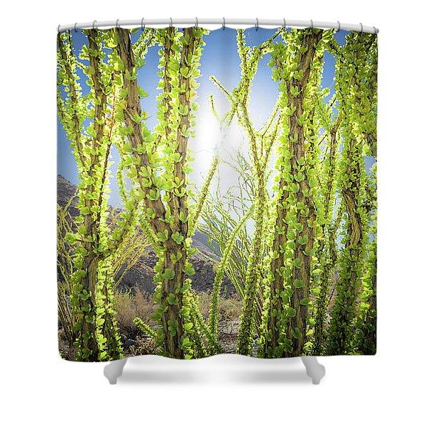 Bright Light In The Desert Shower Curtain
