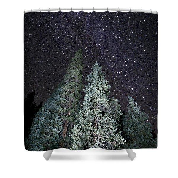 Bright Night Shower Curtain