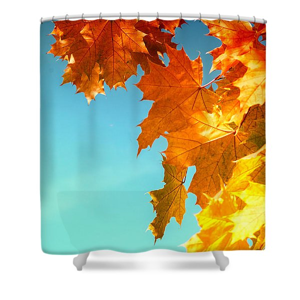 The Lord Of Autumnal Change Shower Curtain