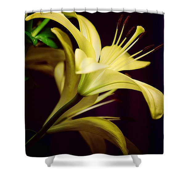 Brilliant Lily Shower Curtain