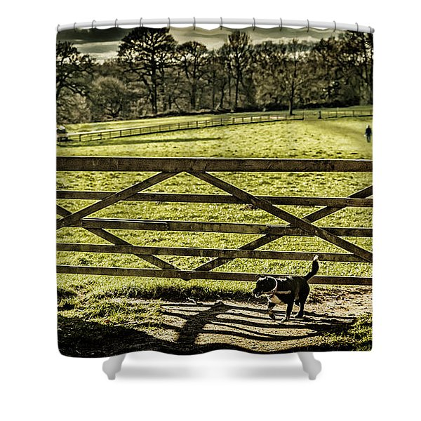 Shower Curtain featuring the photograph Bringing It Back by Nick Bywater