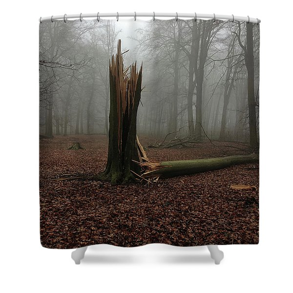 Broken Oak Shower Curtain