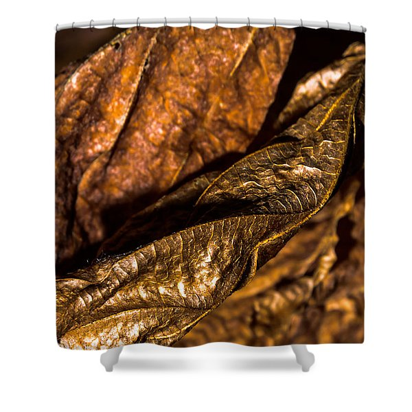 Bronze Leaves Shower Curtain