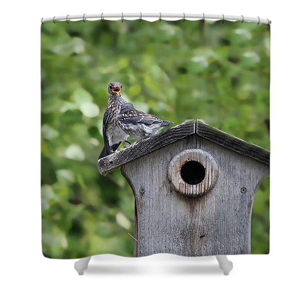 Brother From Another Mother Shower Curtain