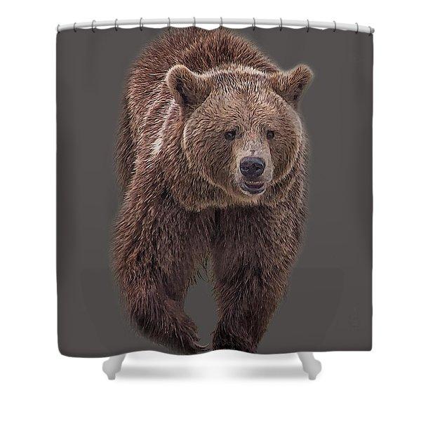 Brown Bear 8   Shower Curtain