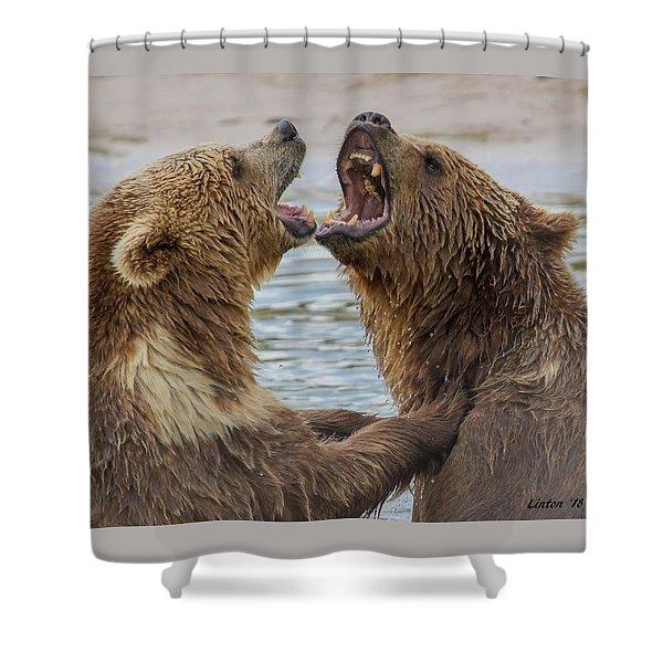 Brown Bears4 Shower Curtain
