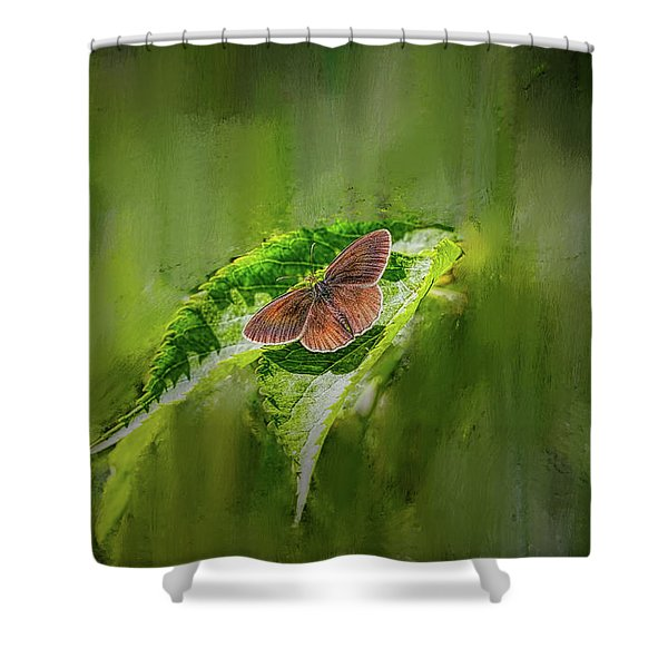 Brown Butterfly #h6 Shower Curtain
