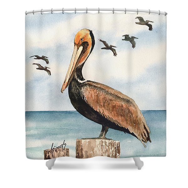 Brown Pelicans Shower Curtain