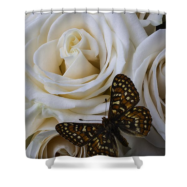 Brown Spotted Butterfly Shower Curtain