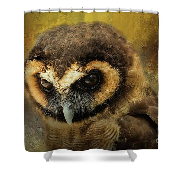 Brown Wood Owl Shower Curtain