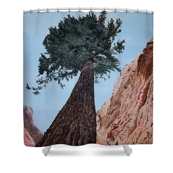 Shower Curtain featuring the painting Bryce Pine by Kevin Daly