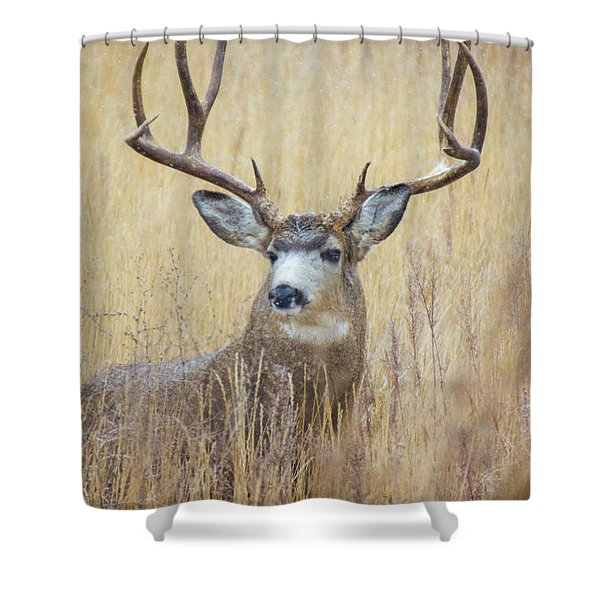 Shower Curtain featuring the photograph Buck In Snow by John De Bord