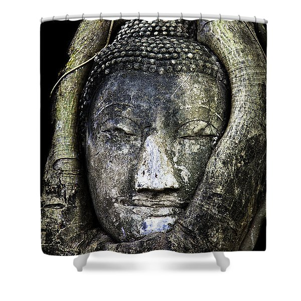 Buddha Head in Banyan Tree Shower Curtain by Adrian Evans