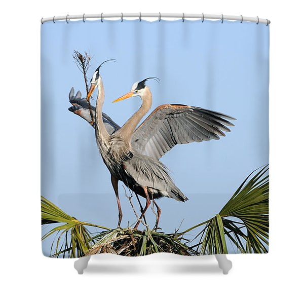 Building The Nest Shower Curtain