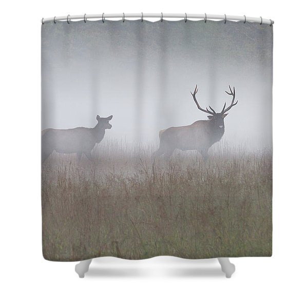 Shower Curtain featuring the photograph Bull And Cow Elk In Fog - September 30 2016 by D K Wall