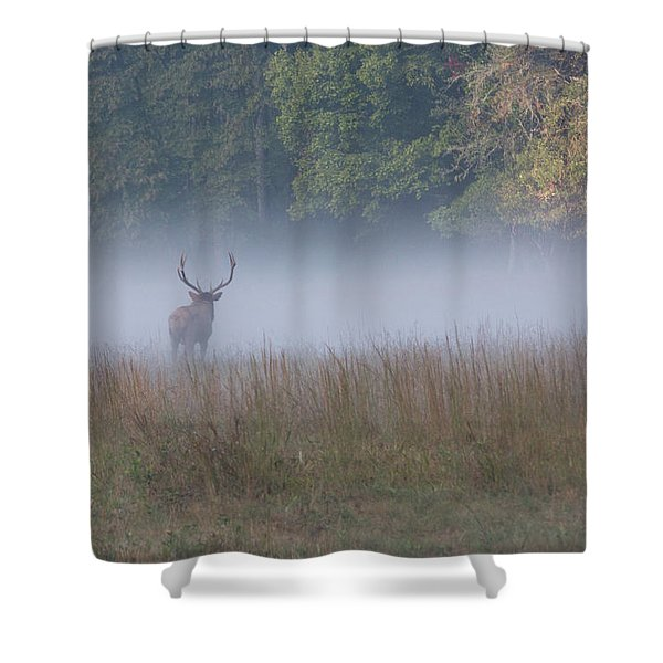 Bull Elk Disappearing In Fog - September 30 2016 Shower Curtain