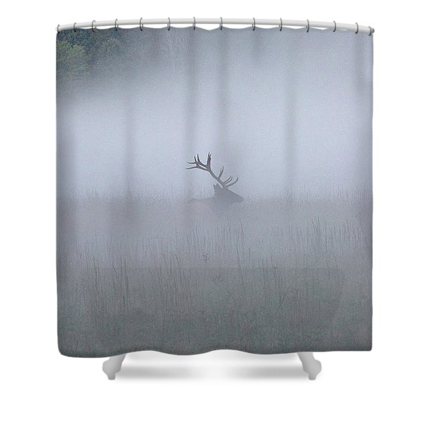 Shower Curtain featuring the photograph Bull Elk In Fog - September 30, 2016 by D K Wall