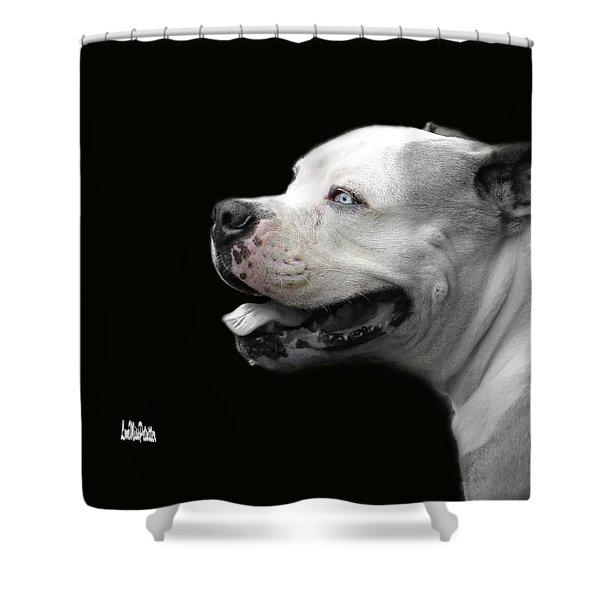 Bulldog Sando  Portrait  Shower Curtain