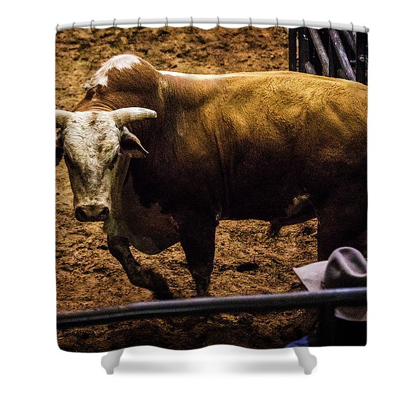 Bullish Shower Curtain