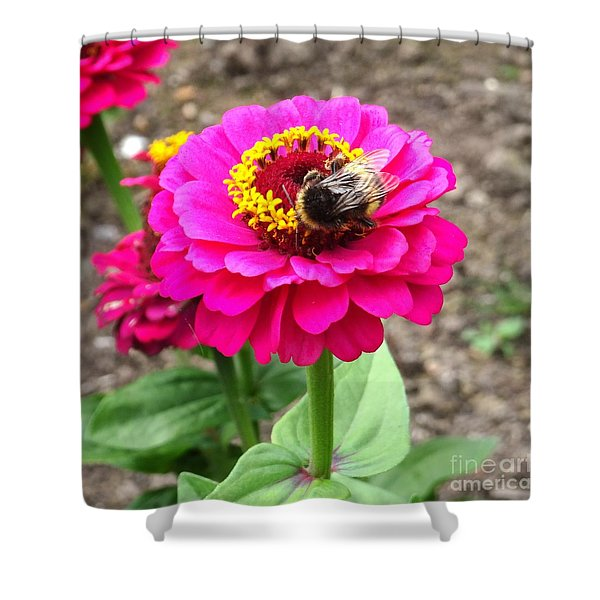 Bumble Bee On Pink Flower Shower Curtain
