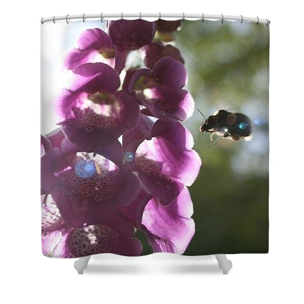 Bumble Rumble Shower Curtain