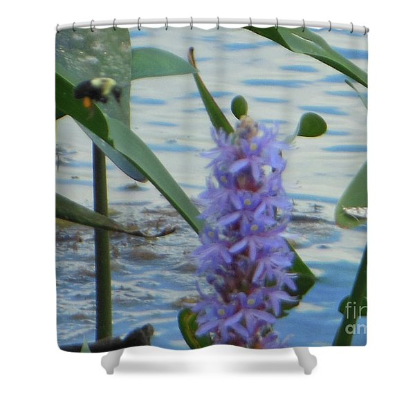 Bumblebee Pickerelweed Moth Shower Curtain
