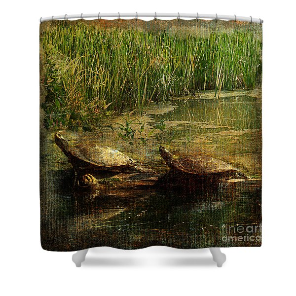 Bump On A Log 2015 Shower Curtain