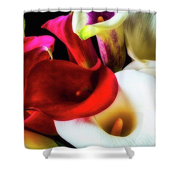 Bunch Of Beautiful Calla Lilies Shower Curtain