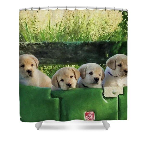 Bundles Of Joy - Labrador Art Shower Curtain