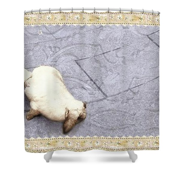 Baby Chases Bunny Shower Curtain