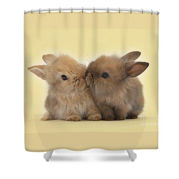 Bunny Kisses Shower Curtain