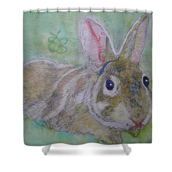 bunny named Rocket Shower Curtain