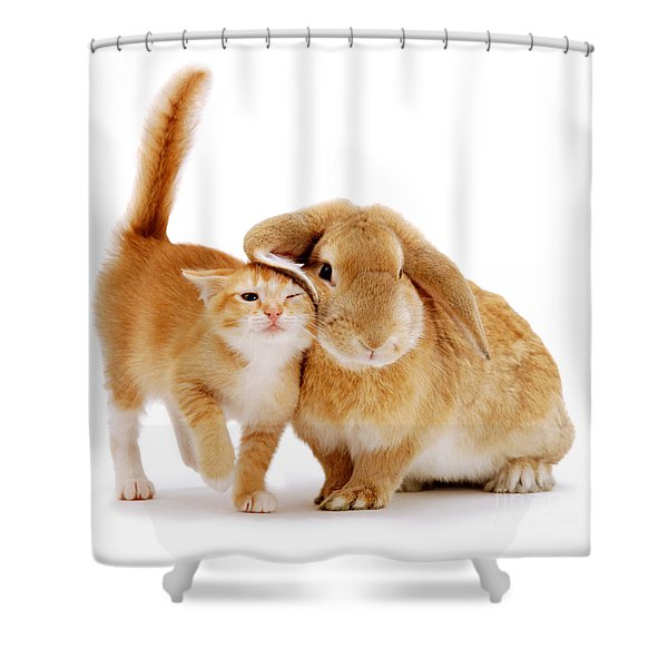 Bunny Rubbing Shower Curtain